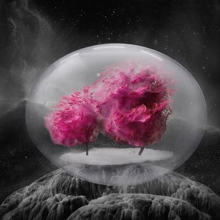 treecocoon--geenen