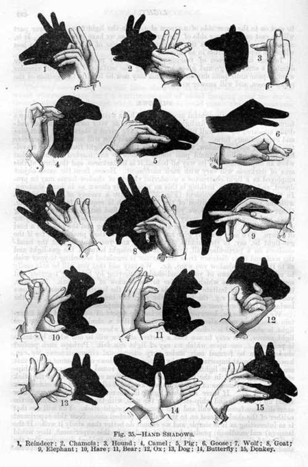 howtomakehandshadowpuppets